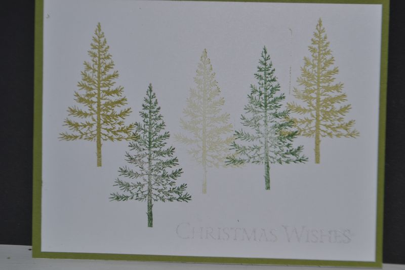 Festival of Trees 001