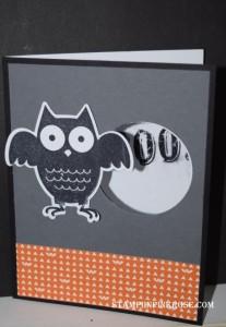 Owl Says Boo