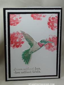 DSC_0545 Hummingbird Bermuda
