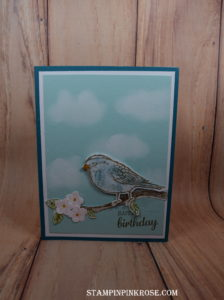 Stampin' Up! CAS Birthday made withBest Birds stamp set and designed by Demo Pamela Sadler. See more cards at stampinpinkrose.com #stampinpinkrose