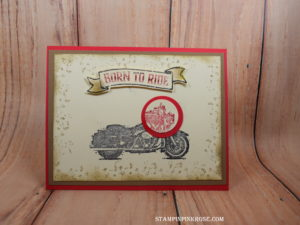 Stampin' Up! CAS birthday card made with One Wild Ride stamp set and designed by Demo Pamela Sadler. See more cards at stampinpinkrose.com #stampinpinkrose