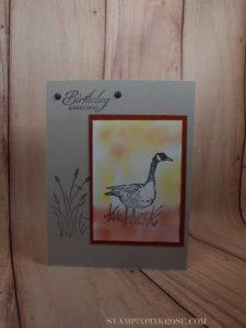 Stampin' Up!   birthday card made with Wetlands stamp set and designed by Demo Pamela Sadler. See more cards at stampinpinkrose.com #stampinpinkrose