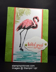 Stampin' Up! Special Occasion card made with Fabulous Flamingo stamp set and designed by Demo Pamela Sadler. Take a stroll with this beautiful flamingo. See more cards at stampinkrose.com and etsycardstrulyheart.com